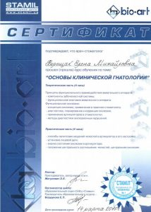sertif13